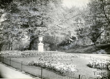 Royal Victoria Park, Bath, Tulip Beds, c.1950s?