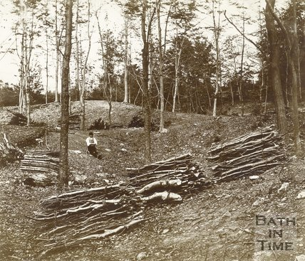 Coppicing in a wood near Bath c.1890