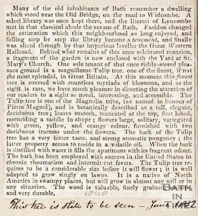Newspaper cutting. Describing a dwelling that stood near the Old Bridge, 1852