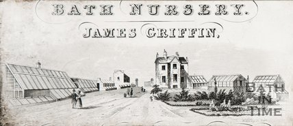 Bath Nursery, Weston, James Griffin.