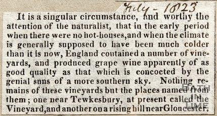 Newspaper article concerning vineyards in Britain, 1823