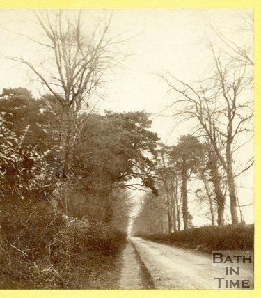 The Avenue leading to Claverton 1874