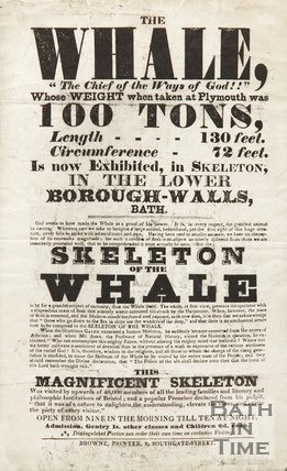 Poster Advertising The Skeleton Of A Whale On Display In The Lower Borough Walls, c.1810