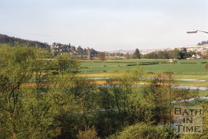 Batheaston Bypass Nature Reserve, 1996