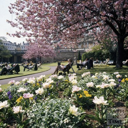 Flowers in a sunny Parade Gardens, Bath, c.1975