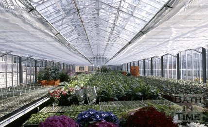 Inside Bath Council's nursery, Cow Lane, Bath, c.1980