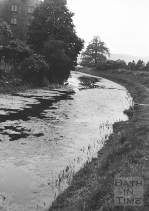 View of Kennet and Avon Canal west of Bathampton Bridge 1956