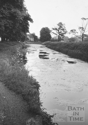 Looking upstream from Bathampton Bridge 1956