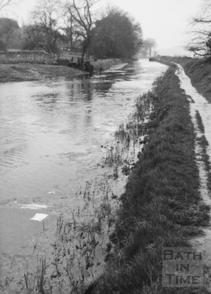 Looking downstream from Bathampton 1956