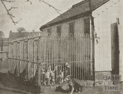 Bath Dogs' Home, Bath c.1890