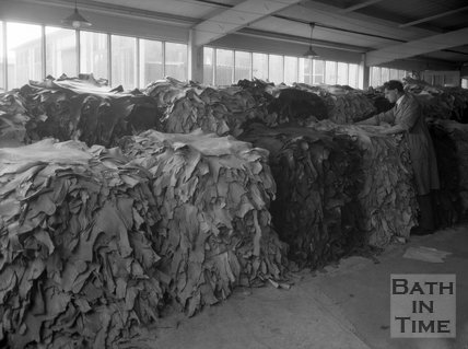 Stacks of pelts at the Cedric Chivers bookbinders, Portway House, Combe Park, Bath, May 1931
