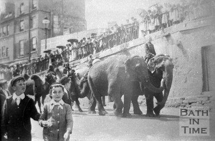 Elephants on the London Road at Walcot Parade, Bath, c.1909