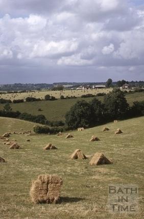 Bales of hay, Midford area 1964