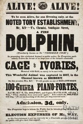 General election advertisement, Southgate Street, Bath 1859