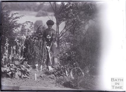 Suffragette Vida Goldstein planting a holly tree 1911