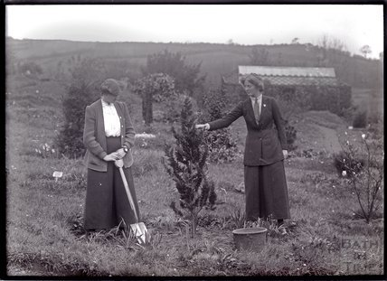 Suffragettes Laura Ainsworth and Charlotte Marsh planting a tree, 1911