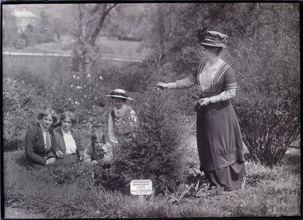 Suffragettes Charlotte Marsh, Laura Ainsworth, Annie Kenney, Mary Blathwayt and Georgina Brackenbury (left to right) 1911