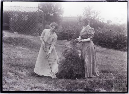 Suffragettes Marie and Georgina Brackenbury tending a tree (left to right) 1909