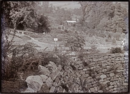 The wall to the Pankhurst Pond c.1909