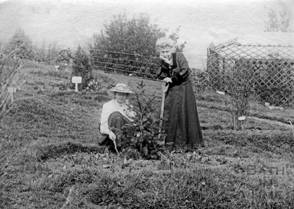 Suffragette Marie Naylor planting tree with Mary Blathwayt 1910