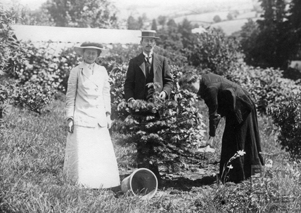 Suffragette Winifred Jones planting tree with Mary Blathwayt and William Blathwayt 1911
