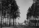 City of Sverdlovsk