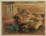 Study of an elm log in a farmyard