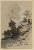 Landscape with a stream between wooded banks