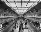 Museum National d'Histoire Naturelle;Galeries d'Anatomie Comparee et de Paleontologie