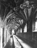 Gloucester Cathedral;Cloister
