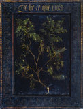 Branch of holly (verso)