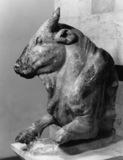 Symbolic Bull