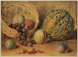 Basket with melon, peaches, grapes and plums