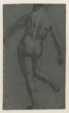 Standing male nude (verso)