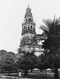 Cordoba Cathedral;Patio de los Naranjos