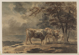 Landscape with trees and cattle - two cows and a calf standing by a clump of small trees to the right