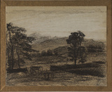 Hilly landscape with trees