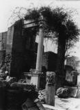 Roman Forum;Shrine near Vestals' House