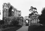 St Mary's Abbey;Abbey Church of St Mary's