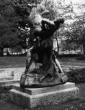 Le denicheur d'oursons