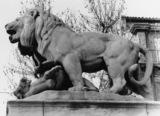 Lion Terrassant un Mouflon