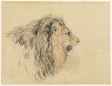 Head of a lion (in profile to the right)
