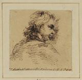 Portrait head of a man - Anthony Westcombe (?)