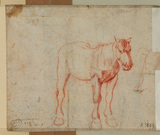 Study of a horse (verso)