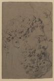 Head of the Farnese Hercules (verso)
