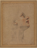Profile of female head