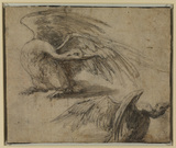 Two swans (recto)