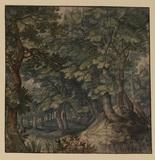 Wood landscape