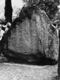 Jelling Stone