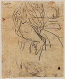 Draped female figure, and head of a cat (verso)